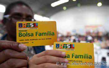 Transferência de renda pelo Bolsa Família atinge quase 2.500 famílias em Alfenas - Alfenas Hoje