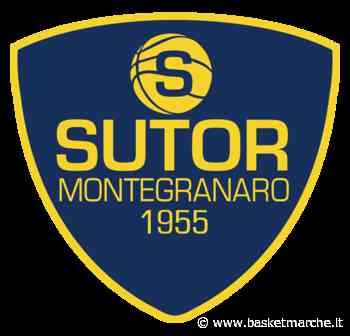 Sutor Montegranaro, si terrà Venerdì 19 l'assemblea pubblica per discutere il futuro del club gialloblu - Serie B - Basketmarche.it