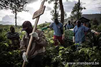 Nieuwe ebola-uitbraak in noordwesten Congo eist al zeker elf levens - De Standaard