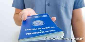Sine Linhares abre a semana com 25 oportunidades de trabalho - O Ribanense