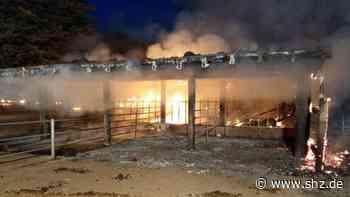 Feuer auf Reiterhof in Osterby: Pferdeunterstand brennt in Osterbyholz nieder – Tiere in Sicherheit | shz.de - shz.de