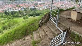 Vandalismus am Calverbühl Dettingen: Esel randalieren bei den Ziegen - SWP