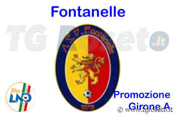 Fontanelle, Luca Campanile lascia ASD Calcio - Tg Roseto