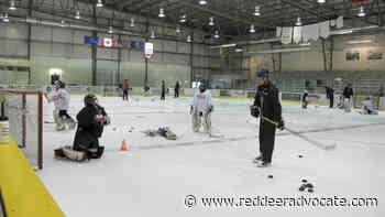 Sylvan Lake Hockey Camp goes ahead with 2020 session - Red Deer Advocate