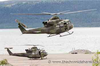 Military helicopters return to Petawawa from Iraq because of pandemic - TheChronicleHerald.ca