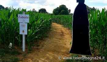 RAVENNA: Torna il labirinto effimero nel mais ad Alfonsine | VIDEO - Teleromagna24