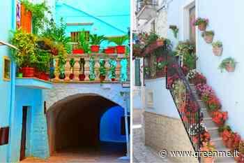 Casamassima, il borgo pugliese dipinto di blu, come le città di India e Marocco - greenMe.it