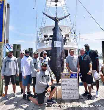Michael Jordan Back on Mid-Atlantic Fishing Scene - Chesapeake Bay Magazine