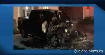 Pickup truck deliberately set on fire in Campbellton area: police - Globalnews.ca