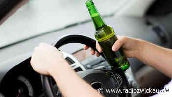 Stromkasten stoppt betrunkenen Autofahrer in Meerane - Radio Zwickau