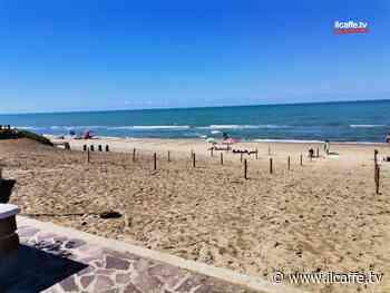 Ardea e Torvaianica verso la scelta di una App per evitare la calca in spiaggia - Il Caffè.tv