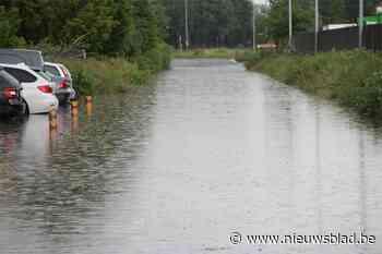 Straten blank en paard dat dreigt te verdrinken: brandweer krijgt meer dan dertig oproepen voor wateroverlast
