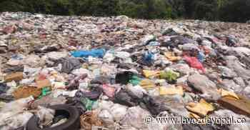 Grave contaminación en la vereda Sevilla de Aguazul - Noticias de casanare - La Voz De Yopal