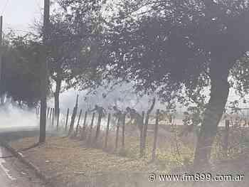 Gran incendio de pastizales camino a La Ciénaga - La Radio de Martin Grande