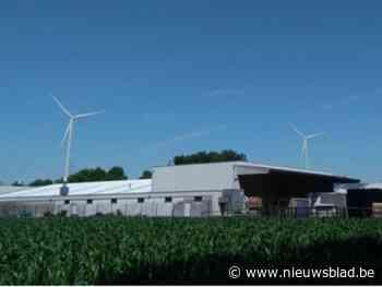 Na Zoersel geeft nu ook Malle negatief advies voor aangevraagde windturbines