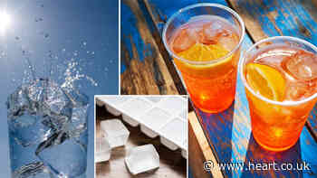 Woman reveals how to 'freeze ice cube trays in 30 minutes' using genius hack - Heart