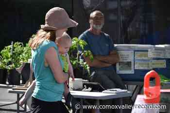 Wednesday street market returns to downtown Courtenay - Comox Valley Record
