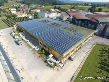 Prosecco: Valdobbiadene Docg, nuovo impianto fotovoltaico - Veneto - Agenzia ANSA