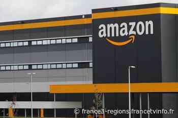 Amazon à Senlis : action surprise d'ATTAC devant l'hôtel de ville - France 3 Régions