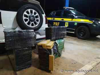 PRF prende casal com grande quantidade de maconha em Terra Roxa - Aquiagora.net