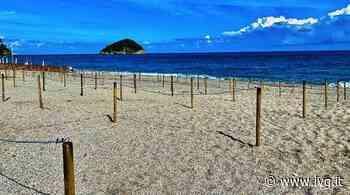 Spotorno e Noli, spiagge libere anti-Covid: stalli, App per prenotare i posti e steward - IVG.it