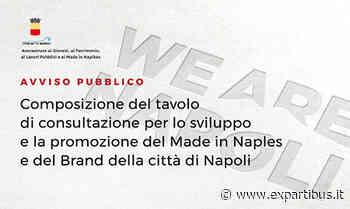 Antonella Di Pietro Presidente Tavolo consultazione Made in Naples - ExPartibus