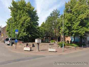 Bloemenwei in Lutselus en meer groen op Schoverikplein - Het Nieuwsblad