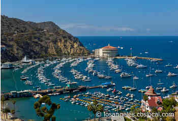 Catalina Island Reopens For Leisure Travel, Ferry Expands Daily Departures - CBS Los Angeles
