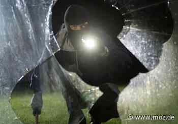 Polizei: Diebe verursachen Schaden von 15.000 Euro in Hoppegarten - Märkische Onlinezeitung