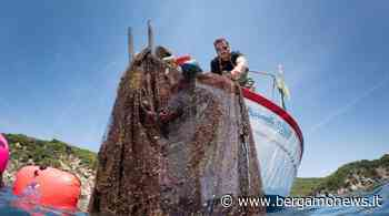 L'impegno di Carvico, Jersey Lomellina e Aquafil per la Giornata degli oceani - Bergamo News - BergamoNews.it