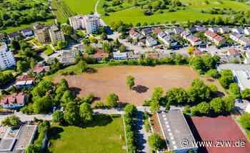 Neues Wohngebiet im Grunbacher Süden: Diskussion um Bürgerbeteiligung - Remshalden - Zeitungsverlag Waiblingen