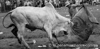 Guararé y COVID-19 - Panamá América