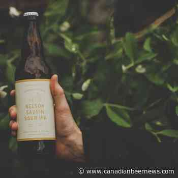 Field House Brewing Releases Nelson Sauvin Sour IPA - Canadian Beer News