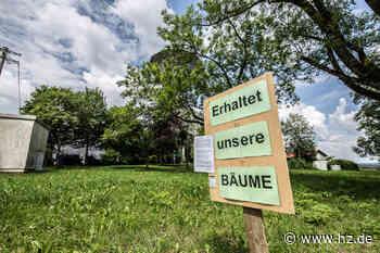 Östlich des Wasserturms in Gerstetten: 14 neue Bauplätze – Baumallee soll weitgehend erhalten bleiben - Heidenheimer Zeitung