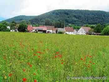 Geisingen: Ortschaftsrat von Kirchen-Hausen berät in öffentlicher Sitzung über neues Wohngebiet - SÜDKURIER Online