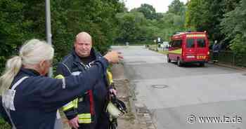 Tote Fische auf anderthalb Kilometern im Blomberger Diestelbach | Lokale Nachrichten aus Blomberg - Lippische Landes-Zeitung