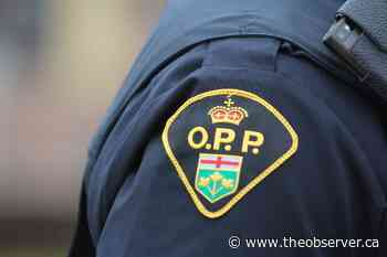 Chatham-Kent man charged after Lambton Shores break-in: OPP - Sarnia Observer