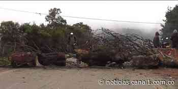 Totoró, Cauca: completa siete días bloqueado - Noticentro 1 CM& - Canal 1