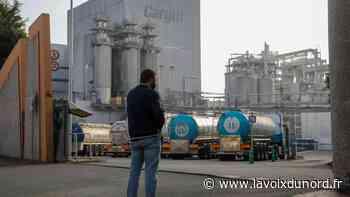 À Haubourdin, la CFDT Cargill lance une pétition pour le redémarrage de l'usine - La Voix du Nord
