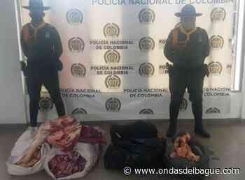 Incautaron gran cantidad de carne de res y cerdo en el Guamo - Ondas de Ibagué