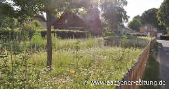 Simmerath schafft in allen Dörfern Wildblumenwiesen: 17.000 bunte Quadratmeter für bedrohte Arten - Aachener Zeitung