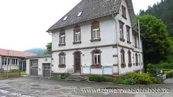 Hornberg: Niederwasser will die Förderung - Hornberg - Schwarzwälder Bote