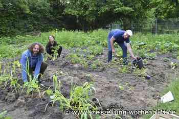 """""""GemüseAckerdemie"""" unterstützt Schulgarten: Ackercoaching für Tostedter Realschullehrer - Kreiszeitung Wochenblatt"""