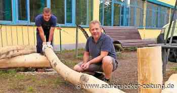 Baummikado auf dem Schulhof in Marpingen ermöglicht - Saarbrücker Zeitung