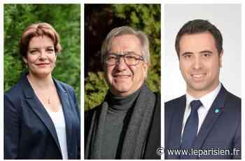 Municipales à Nangis : les candidats espèrent convaincre les abstentionnistes - Le Parisien