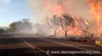Un voraz incendio se desató a metros del Complejo Palmar del Lago - Diario La Provincia SJ