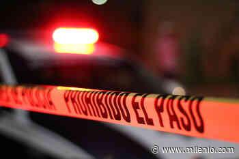 Hallan envueltos en plástico y baleados cadáveres de dos hombres en Palmar de Bravo - Milenio