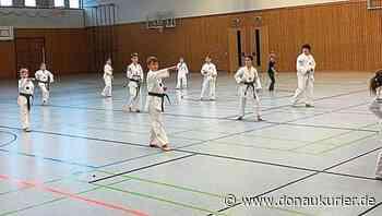 Allersberg: Allersberger Taekwondo-Kämpfer zurück im Training - Aufgeteilt in drei Gruppen haben die TSV-Sportler in dieser Woche ihre erste Einheit in der Rothseehalle absolviert - donaukurier.de
