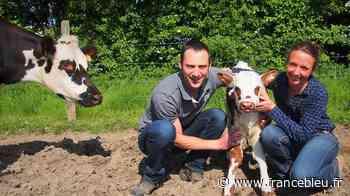 À Coutances, Christophe OSMONT, veut réduire le stress de ses animaux - France Bleu