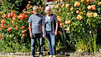 """Heiligenhafener Ehepaar Höfer präsentiert seinen """"Offenen Garten"""" am Wochenende - fehmarn24"""